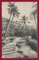 TOZEUR. T. Designi, Hôtel Bellevue. - Dans L'oasis, Une Séguia. (C.P.A. - Animée.) - Tunisie