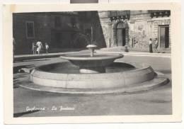 2134-GUGLIONESI(CAMPOBASSO)-LA FONTANA-ANIMATA-1950-FG - Campobasso