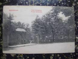 Alba Iulia-Gyulafehervar-cca 1914      (1776) - Romania
