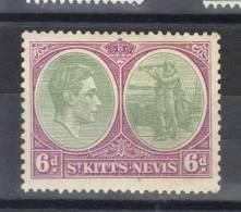 N° 99* Sans Gomme  Dentelé 13- 12 - St.Christopher-Nevis & Anguilla (...-1980)
