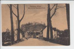6650 HOMBURG / Saar, Blick Von Der Naarbrückerstrasse - Saarpfalz-Kreis
