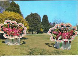 Corea Del Sud- Korean Traditional Customs Fan Dance - Corea Del Sud