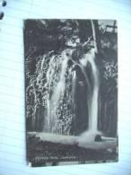 Jamaica Roselle Falls Old - Jamaica