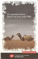 CALENDARIO DEL AÑO 2008 DE UNOS CAMELLOS TMB (CALENDRIER-CALENDAR) - Calendarios
