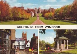Cp , ANGLETERRE , WINDSOR CASTLE , Souvenir , Multi-Vues