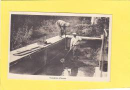 CPA  - 66 - PRATS De MOLLO - Etablissement De Pisciculture Du Vallespir Henri FISCACH - Evacuation D'alevins - France