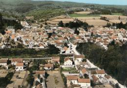 SAVIGNY-LES-BEAUNE VUE AERIENNE - France