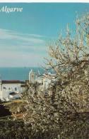 BR23065 Algarve   2 Scans - Portugal