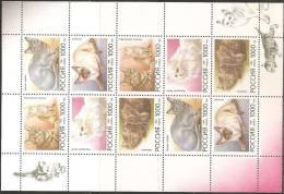Russia 1996 M/sheet MNH** - Yvert 6170/74 - 1923-1991 URSS