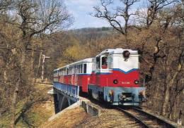 RAIL RAILROAD * CHILDREN´S RAILWAY FOREST RAILWAY * TRAIN LOCOMOTIVE MAV * BRIDGE * CALENDAR * Top Card 2005 4 * Hungary - Calendarios