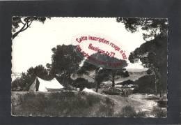 IB 264 - LA MADRAGUE - Le Camping - (83 - Var) - France