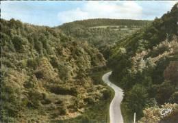 22 - St-GILLES-VIEUX-MARCHE - Près Mur De Bretagne - Gorges De La Vallée De Poulancre - Semi Moderne Gd Format - Saint-Gilles-Vieux-Marché
