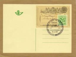 Carte Entier Postal Stationary Ganzsache Card Postcard Belgique Bruxelles Journée Du Timbre Dag Van De Postzegel 1971 - Cartes Illustrées