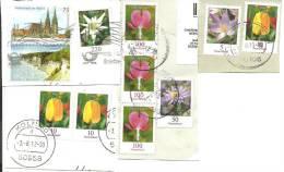 Deutschland: Krokus - Tulpe - Aster - Tränendes Herz - Edelweiss - Pflanzen Und Botanik