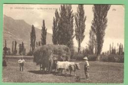 66 ARGELES-GAZOST - La Rentrée Des Foins - Autres Communes