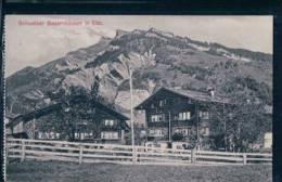 Elm Bauernhäuser (266) - GL Glaris