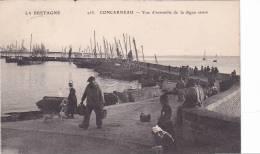 20836 Concarneau Vue Ensemble La Digue Neuve -la Bretagne ELD 253 -pecheur Chien Coiffe Bretonne