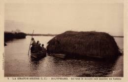 44 LA GRANDE BRIERE - ST / SAINT LYPHARD ICI TOUT LE MONDE SAIT MANIER UN BATEAU - Saint-Lyphard
