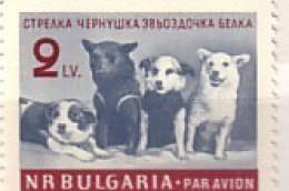BULGARIA / Bulgarie 1961 Cosmos - Dogs  (Belka ;Strelka)  1v.-MNH