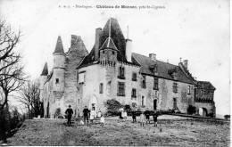 SAINT -CYPRIEN  - LANGUEDOC - ROUSSILLON  - DORDOGNE_Chateau De MONSEC  Animation - France