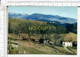 Aux Environs D'  OLLIERGUES Et Du BRUGERON - Perspectice Sur La Montmarie - Chaîne De Pierre Sur Haute - Andere Gemeenten