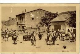 Carte Postale Ancienne Saintes Maries De La Mer - Bandido. Lâcher Des Taureaux Après La Course - Saintes Maries De La Mer