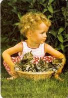 CALENDARIO DEL AÑO 2000 DE UNOS GATOS  (CAT) (CALENDRIER-CALENDAR) - Calendarios