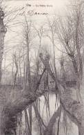 ORP - La Petite Geete - Carte Circulée 1905 - Orp-Jauche