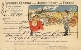 BELLE CPA : SYNDICAT CENTRAL DES AGRICULTEURS DE FRANCE AGRICULTURE CAMPAGNE FERME FENAISON ATTELAGE ILLUSTRATION 1900 - Cultures