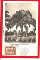 456n - Congo Français -  Culture Du Palmier - Congo Français - Autres