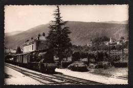 01. GEX.  ( AIN ).  LA GARE SNCF. LE TRAIN.....C006 - Gex