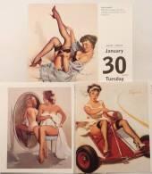 LOT 3 ELVGREN PINUP SEXY GIRLS ~BEAUTIFUL WOMEN~ART~2007 Table Calendar #1 - Calendars