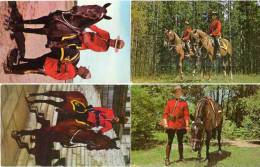 4 CP - Royal Canadian Mounted Police - Cheval -    (48038) - Alberta