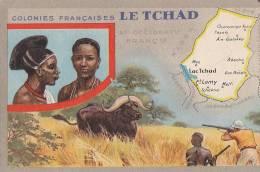 Afrique - Tchad - Chasse au Buffle