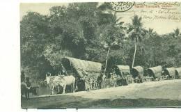 SRI LANKA - CEYLAN - Native Transport - (thé?) - Sri Lanka (Ceylon)
