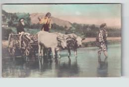 Romania  Ethnic-villagers Crossing  With Bullock- Bull-cart  Photo 1907 Ed. C Sfetea Ce1644 - Rumänien