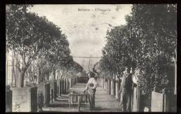 Bélabre: L'orangerie - France