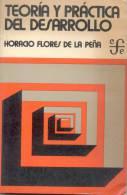 TEORIA Y PRACTICA DEL DESARROLLO HORACIO FLORES DE LA PEÑA FONDO DE CULTURA ECONOMICA AÑO 1976 193 PAGINAS MAS PUBLICI - Economía Y Negocios