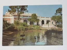 BRINDISI - Zoo Safari Di Fasano - Ristorante Coccodrillo - Laghetto Dei Cigni - Brindisi