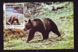 BEAR,OURS,1995,C.M,MAXI CARD,CARTES MAXIMUM,ROMANIA - Orsi