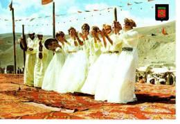 Maroc  TYPIQUE -  GROUPE FOLKLORIQUE - Maroc