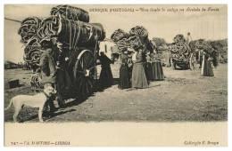COSTUMES - PORTUGAL -  ALENTEJO OURIQUE - Uma Lirada De Cortiça Na Herdade Da Favela Carte Postale - Beja