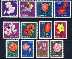 POLAND 1964 Garden Flowers Set MNH / **.  Michel 1541-52 - Plants