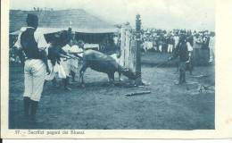Inde Sacrifizi Pagani Dei Khassi Missioni Salesiane Dell Assam - India