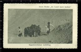 Old Original German Poster Stamp (reklamemarke) Sven Hedin,Explorer,geographer ,expedition,India, - Geography