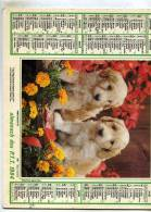 Calendrier  G-F  De  La Region Parisiene 75-78-91-92-93-94-95 De 1984 - Big : 1981-90