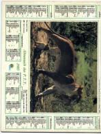 Calendrier  G-F  Des  Postes De   1985 (manque Pages Interieur) - Big : 1981-90