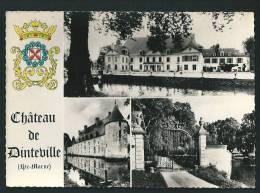 """DINTEVILLE  (52) : """" LE CHATEAU """"  CPSM - France"""