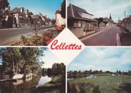 CPM - CELLETTES 41 LOIR ET CHER - LES MONTILS - France
