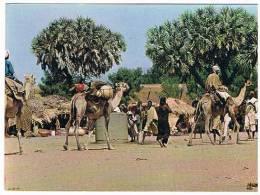 CARTE POSTALE COULEUR...FORT LAMY..TCHAD.....N° 55... - Tchad